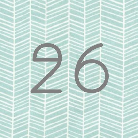 26Dinge