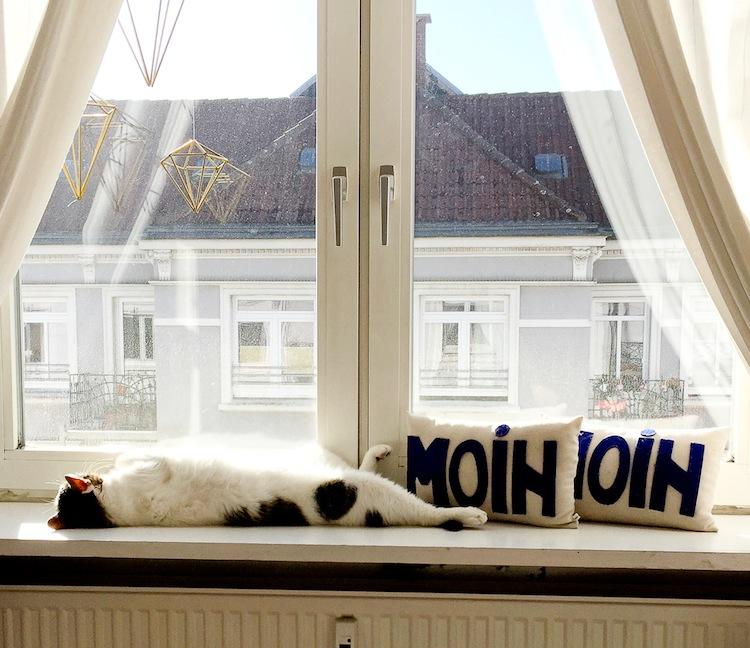 Warum zur miete wohnen manchmal nervt von innen - Fensterbank zum sitzen bauen ...