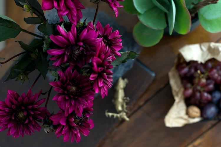 Herbststimmung – Plants & Flowers {Urban Jungle Bloggers}