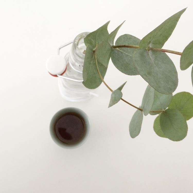 eukalyptus hamburgvoninnen