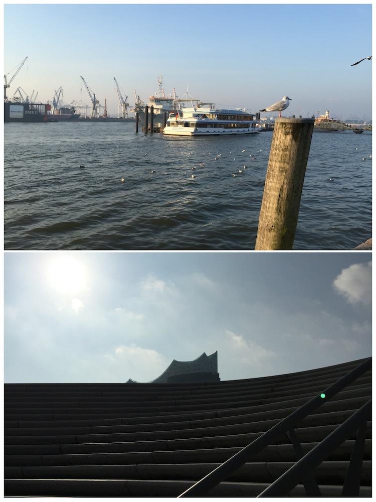 Hafen und die Spitzen der Elbphilharmonie ... Fotomotive gibt's hier reichlich!