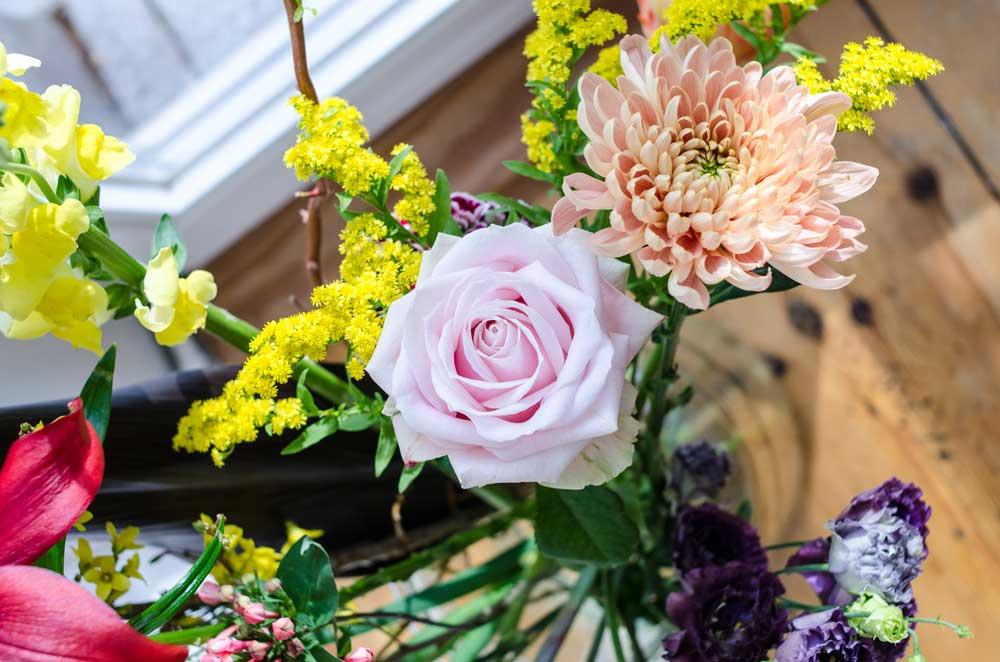 7 Tage Blumen – und eine Verlosung