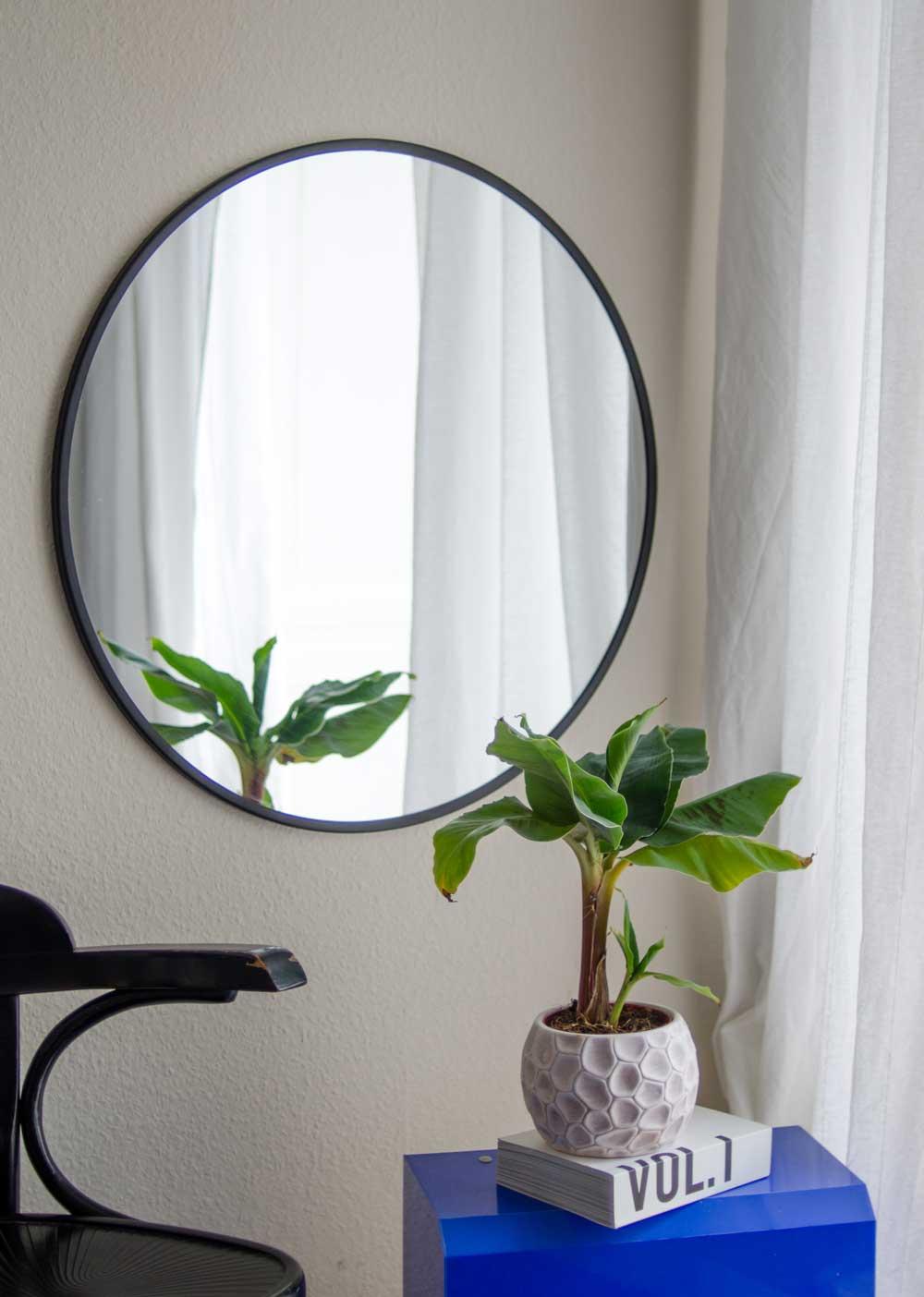 Bananenpflanze im Spiegel. hamburgvoninnen.de